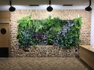 вертикалнка градина, зелена стена, белчински извор, спа комплекс